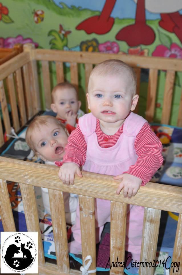 Фотографии детей в детском доме малютка