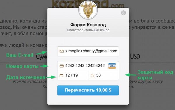 Пример заполнения формы спонсорского благотворительного взноса